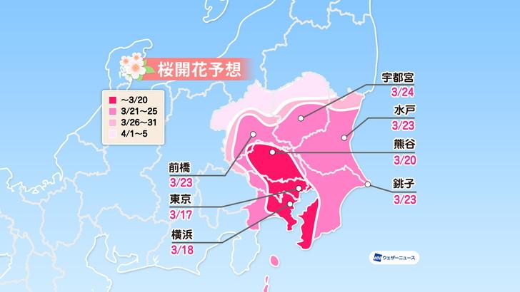 関東 2020 桜 開花